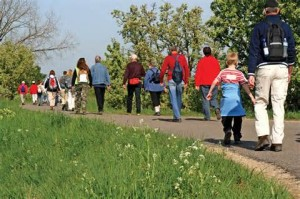 Cover photo for Walk to Better Health