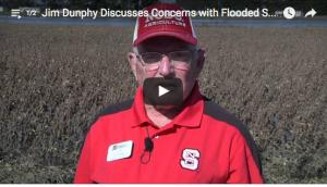 Jim Dunphy in Soybean Field