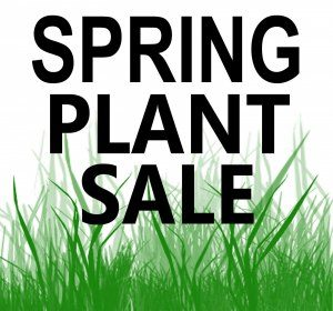 Cover photo for Master Gardener Plant Sale